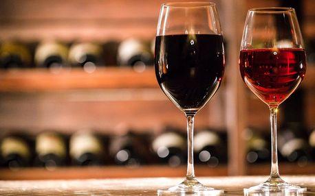 Řízená degustace vín s párováním se sýry