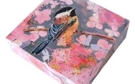 Bloček na poznámky v boxu Carolyn Carter by Portico Designs, 400listů