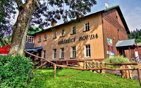Krkonoše - pobyt na Hříběcí boudě pro dvě osoby, sauna, polopenze, půjčení kol.