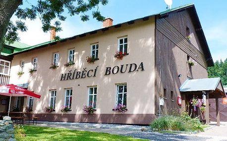 2–6denní pobyt pro 2 s polopenzí a saunou v Hříběcí boudě v Krkonoších