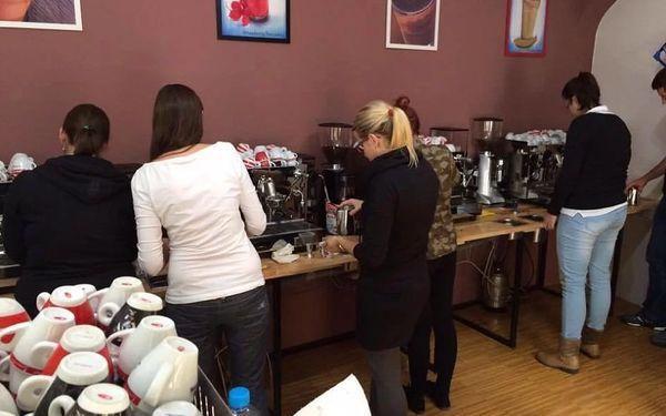 Kurz kávy s profesionálním baristou v délce 6-8 hodin