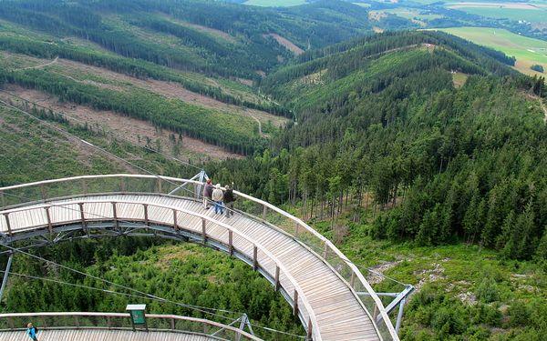 Stezka v korunách stromů Dolní Morava