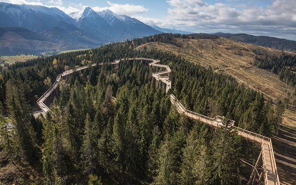 Stezka korunami stromů na Slovensku
