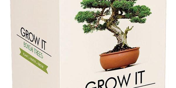 Pěstitelský set se semínky bonsaje Gift Republic Bonsai Trees