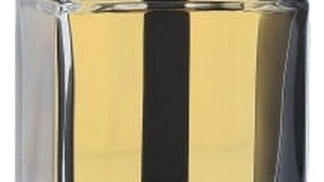 Christian Dior Dior Homme Intense 2011 100 ml parfémovaná voda pro muže