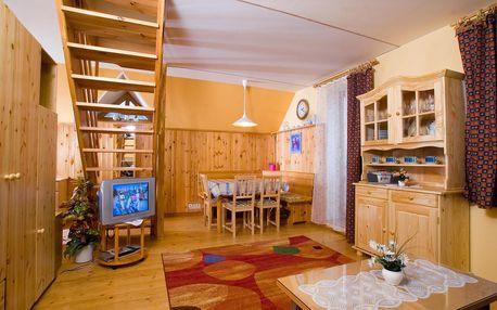 Apartmán v Krkonoších pro dva nebo rodinu + polopenze, sauna