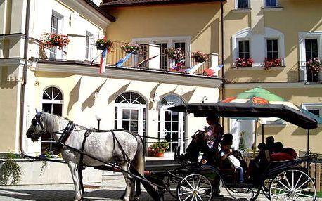Pobyt v luxusním 4* Hotelu Goethe Spa & wellness s polopenzí a bazénem zdarma, sleva na procedury.