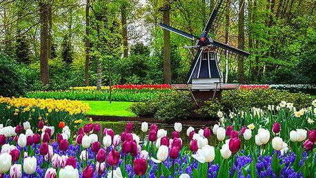 3denní zájezd pro 1 do Amsterdamu