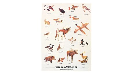 Utěrka z bavlny Gift Republic Wild Animals Multi