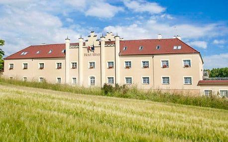Relaxační pobyt v Hotelu Allvet *** u Vyško