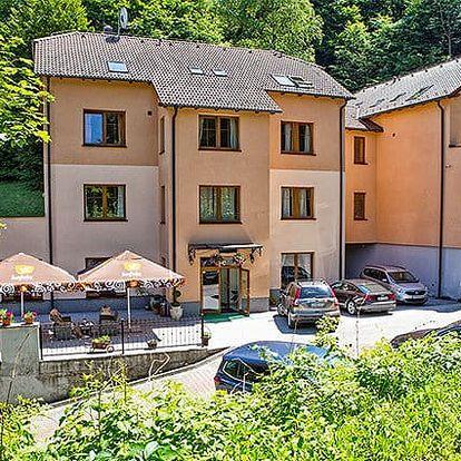 3–5denní wellness pobyt pro 2 u Trenčianskych Teplic ve Villa Carpe Diem na Slovensku