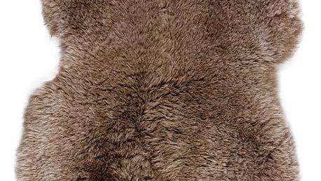 Ovčí kožešina s krátkým chlupem Taupe, 100x60cm