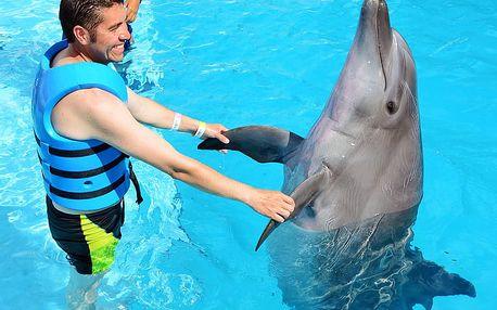 Jednodenní výlet do města Norimberk + zvýhodněný vstup do proslulé ZOO s Delfináriem a delfíní show, spousta termínů