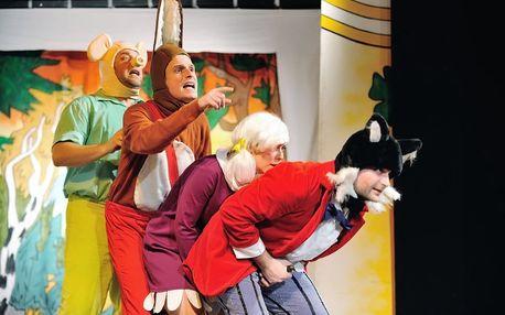 Čtyřlístek v pohádce: rodinné vstupné do divadla