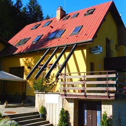 Pobyt v Beskydech v penzionu Na Lůkách. Polopenze, welcome drink, vstup do sauny, kulečník aj.