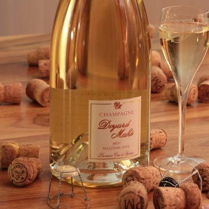 Degustace šampaňského