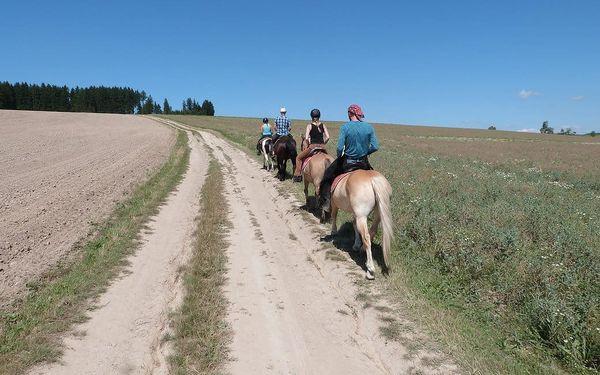 Celodenní vyjížďka na koni4