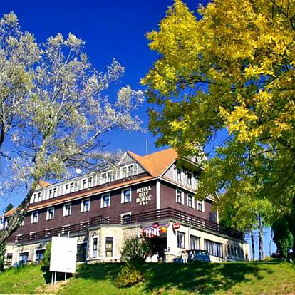 Harrachov v horském hotelu v centru města s neomezeným vstupem do wellness ve stylu římských lázní a polopenzí – i na týden