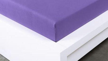 XPOSE ® Jersey prostěradlo dvoulůžko - fialová gramaž 150g/m 200x220 cm