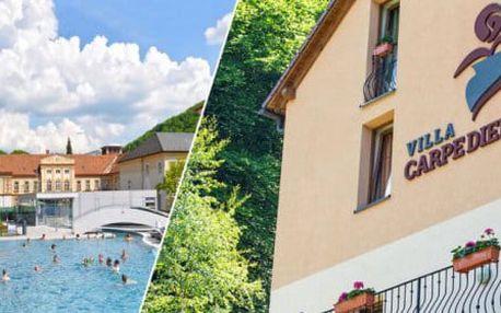 Romantický wellness pobyt ve Ville Carpe Diem *** v Trenčianských Teplicích