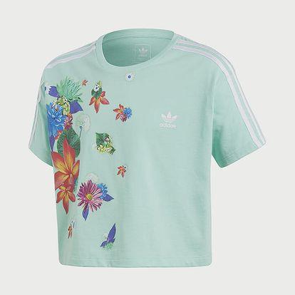 Tričko adidas Originals J Grphc Cpd Tee Zelená
