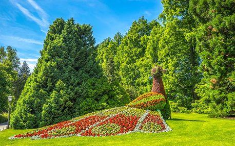 Bodamské jezero – ostrov Mainau, Kostnice a kůlové stavby UNESCO | 1denní poznávací zájezd do Švýcarska