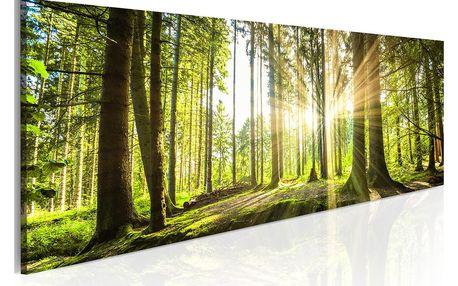 Obraz na plátně Artgeist Daylight 120x40cm