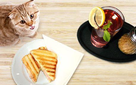 Toast a domácí limonáda v Kočcafé pro 1 i 2
