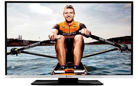 Televize GoGEN TVF 48R384 STWEB černá