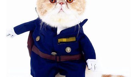 Vtipné kostýmy pro kočky a malé pejsky