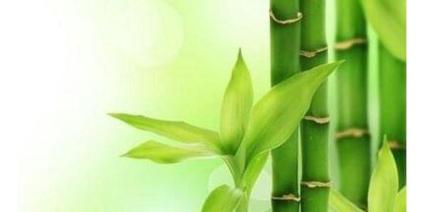 Viscopur Matracová podložka Bamboo, 180 x 200 cm5