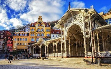 TOP wellness u Karlových Varů