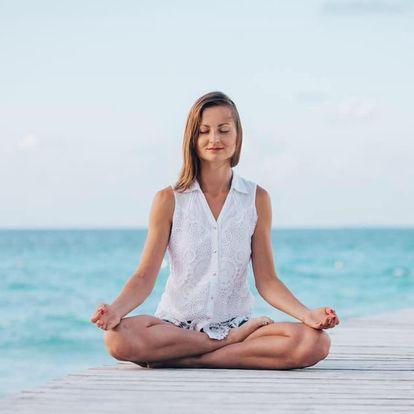 Online kurz: Umění Meditace