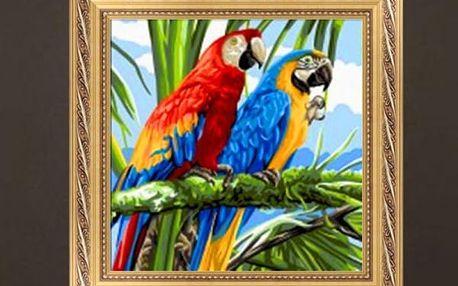 5D DYI kamínkový obrázek - Papoušci Ara