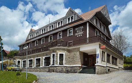 Hotel Spa Bílý Hořec*** s polopenzí a wellness u lanovky na Čertovu horu