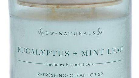 dw HOME Vonná svíčka ve skle Eucalyptus and Mint Leaf 500g, zelená barva, sklo, dřevo