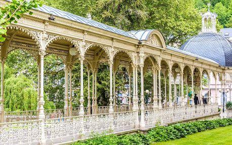 Luxusní dámská wellness jízda v Karlových Varech