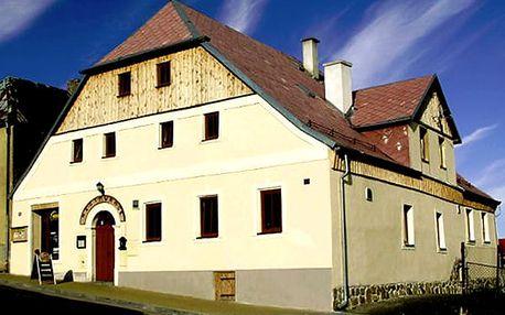 Dovolená pro dva v Penzionu Plzeňka s polopenzí, zmrzlinový pohár, lahev vína, domácí limonáda.