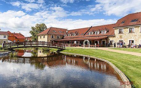 3–6denní luxusní wellness pobyt s polopenzí pro 2 v hotelu Lions Nesuchyně
