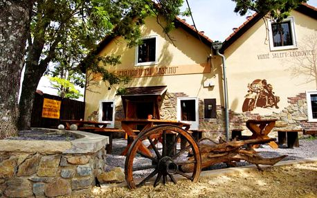 Na kola a za vínem: Jižní Morava v moderním penzionu u Znojma s wellness, neomezenou konzumací sudového vína a polopenzí