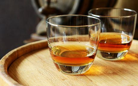 Degustace 5 vzorků rumů s odborným výkladem