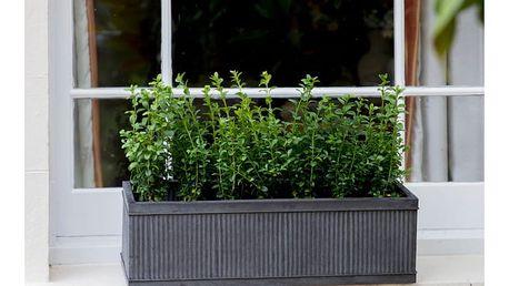 Květináč Garden Trading Vence Window, 60 x 18 cm