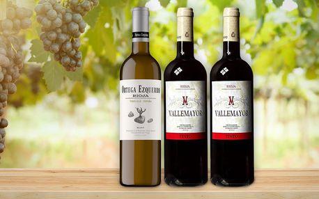 3 španělská vína z nejlepší oblasti Rioja