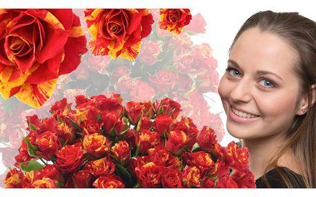 Africké prémiové růže Fire Flash: rozvoz po ČR