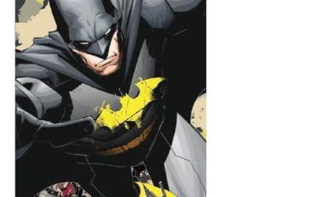 Plážová Osuška Batman