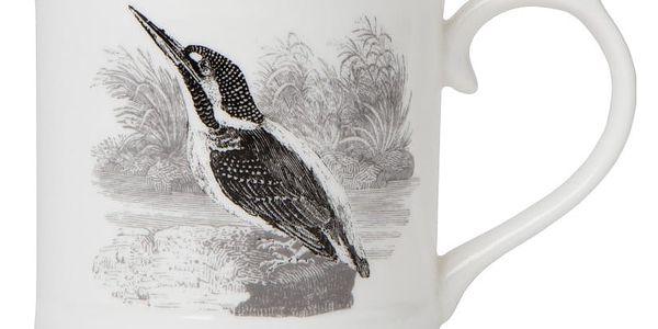 Hrneček Magpie Bewick Kingfisher