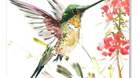 Autorský plakát Hummingbird od Surena Nersisyana, 42x30cm