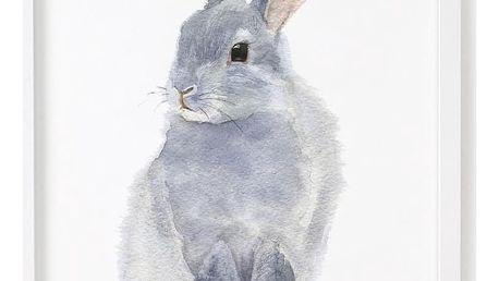 Plakát Chocovenyl Rabbit, A4