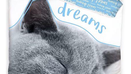 Carbotex Bavlněné povlečení Kočička - Sweet Dreams blue, 140 x 200 cm, 70 x 90 cm