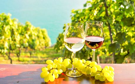 Jižní Morava s polopenzí a ochutnávkou vín